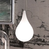 next Drop 2 XS Single pendant light with canopy