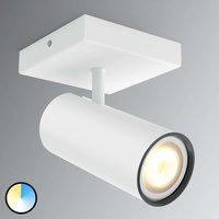 Philips Hue Buratto LED spot white 1 bulb dimmer