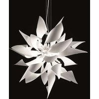 Designer hanging light Ginger  50 cm