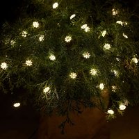 Indoor and outdoor LED string lights Silke 40 bulb