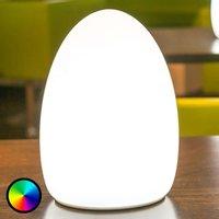 Egg decorative light  controllable via app