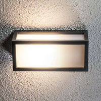 Decorative energy saving outdoor wall light Tame