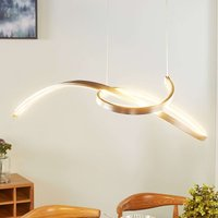 Dominykas exquisite LED pendant lamp
