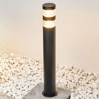 Lanea stainless steel path light with LEDs