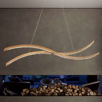 Curved LED hanging light Live S160