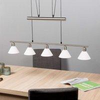 Height adjustable pendant light  5 bulb