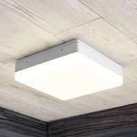 Thilo LED ceiling lamp  IP54  white  24 cm