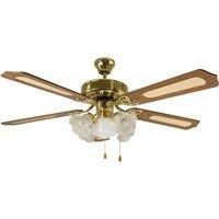 FIORITO ceiling fan  5 bulb  polished brass