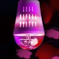 E27 4 W LED decorative bulb  Butterflies  360
