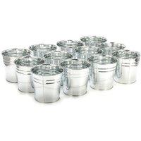 12pcs Iron Silver Plating Flower Pot Water Bucket Gardening