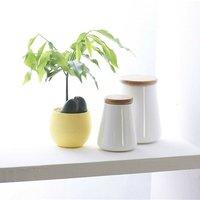 Briday - 1PC yellow Mini Flower Pots Colourful Round Plastic Plant Flower Pot planters for succulents Decor Plants Desktop Flower Pots Maceta