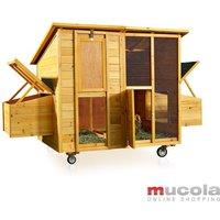 214 CM Chicken coop Chicken house Rabbit cage Hasenstall Chicken rabbit hutch - MUCOLA
