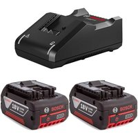 2x 18v 3.0Ah Batteries Li-ion Cordless 3ah Coolpack & GAL18V40 Fast Charger - Bosch