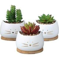 3.2 Inch Cute Cat Ceramic Succulent Planter Pots with Removable Saucer Unique Cactus Planters Porcelain Decorative Flower Pot for Cat Lovers Set of 3