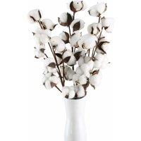 Soekavia - 3pcs Cotton Branch 10 Heads Naturally Dried Flowers Artificial Decorative Flowers White Artificial Flowers Fake Logical Flowers
