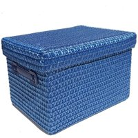 Neon Bright Colours Kids Playroom Toy Box Cupboard Storage Basket + Handle and Lid [Blue,Extra Large 36x28x24cm]