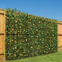 Trellis With Yellow Flowers (1m x 2m) - CHRISTOW