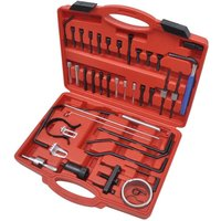Hommoo - Diesel and Petrol Engine Timing Tool Set for Citroen and Peugeot VD07778