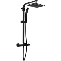 Dual Head Shower Set with Mixer and Hose Black - VIDAXL