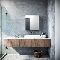 670 x 600 mm Bathroom Cabinet Double Mirror Wall Mounted Stainless Steel Modern Storage Cupboard 2 Door with 3 Shelves - Elegant