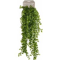 Artificial Ficus Pumila 80 cm - Green - Emerald