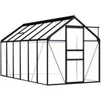 Greenhouse Anthracite Aluminium 7.03 m² - YOUTHUP