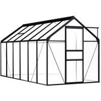 Greenhouse Anthracite Aluminium 7.03 m2 - ASUPERMALL