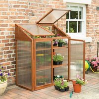 Hardwood Wooden Mini Greenhouse Garden Growhouse and Shelves - Rowlinson