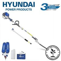 HYPT5200X 52cc Long Reach Petrol Pole Hedge Trimmer/Pruner - Hyundai
