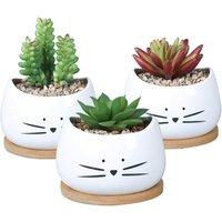 LangRay 3.2 inch Cute Ceramic Cat Succulents Planter Pots with Removable Saucer Unique Cactus Planters Decorative Porcelain Flower Pot for Cat Lovers