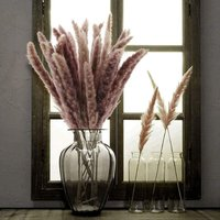 Pampas Grass 30 Pcs Dried Pampas Herbs Natural Dried Flowers Phragmites Communis Bouquet Artificial Flowers for DIY Home Kitchen Wedding Table Flower