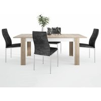 Lion Dining set package Lion Large extending dining table 160/200 cm + 4 Lillie High Back Chair Black. - NETFURNITURE