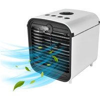 Perle Raregb - Multifunctional Domestic Air Conditioner Water Cooling Fan Humidifiers USB Office Cooler (19 * 19 * 21.3cm)
