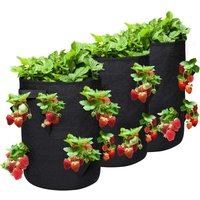 Briday - NASUM 3 Piece Garden Planting Bags, Outdoor Non-Woven Textile Plant Bag for Strawberry/Potato/Tomato/Flower with Heavy Duty Handles and 10