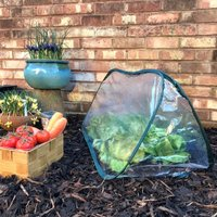 Pop-Up Poly Cloche and Mini Greenhouse - 1.25m long x 0.5m wide x 0.5m high (pack of 2)