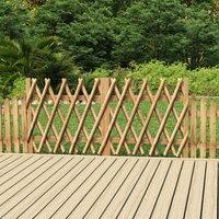 Ilovemono - Portillons de jardin 2 pcs Bois de pin imprégné 300x100 cm