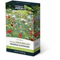 Achat Nature - Prairies fleuries : j'attire les coccinelles 7 m2