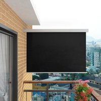 Sina Balcony Multi-Functional W 2m Retractable Side Awning by Black - Dakota Fields