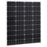 Zqyrlar - Solar Panel 80 W Monocrystalline Aluminium and Safety Glass