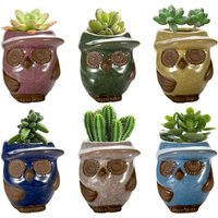 Succulent Planter, 3.2 inch Ceramic Owl Small Pots, Ceramic Pots for Plants, Pack of 6, Plants not Included