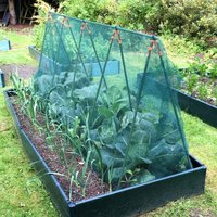 Gardenskill - Super Cloche Strawberry Protection Cage with Bird Netting - 2.4m x 0.75m x 1m high
