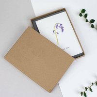 Boxed Set Of Six Herbs And Flowers Thank You Cards