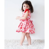 Special Occasion Dress For Baby Girls