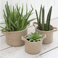 Set Of Three Woven Plant Pot Baskets
