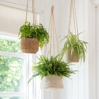 Jute And Seagrass Hanging Planters