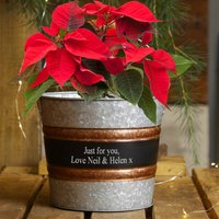 Personalised Vintage Planter Bucket Christmas Gift