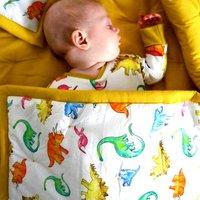 Childrens Dinosaur Quilt
