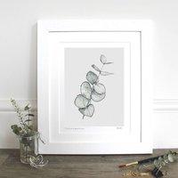 Eucalyptus 10x12' Mounted Fine Art Print