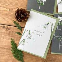 Botanical Christmas Card 'Warm Wishes' Festive Foliage