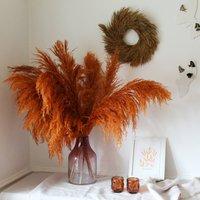Honey Pampas Wreath